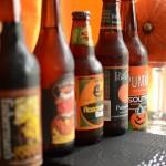 Autumn Elixirs: Top 5 Pumpkin Beers
