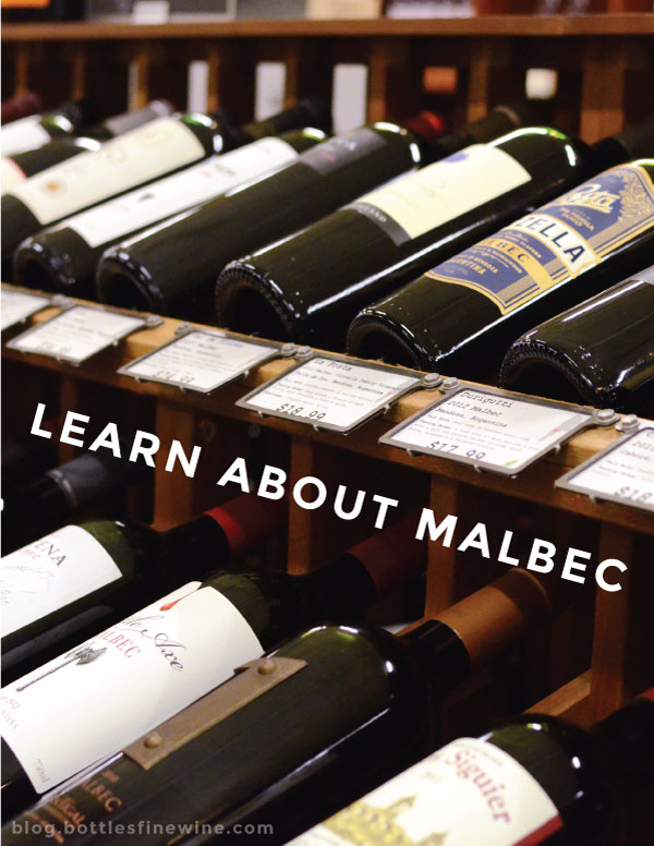 Malbec Wine Information - regions, styles, brands