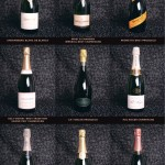 Top 9 Bubbly Wines for the Holidays!