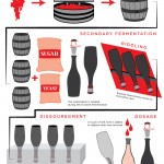 All About Champagne Infographic!