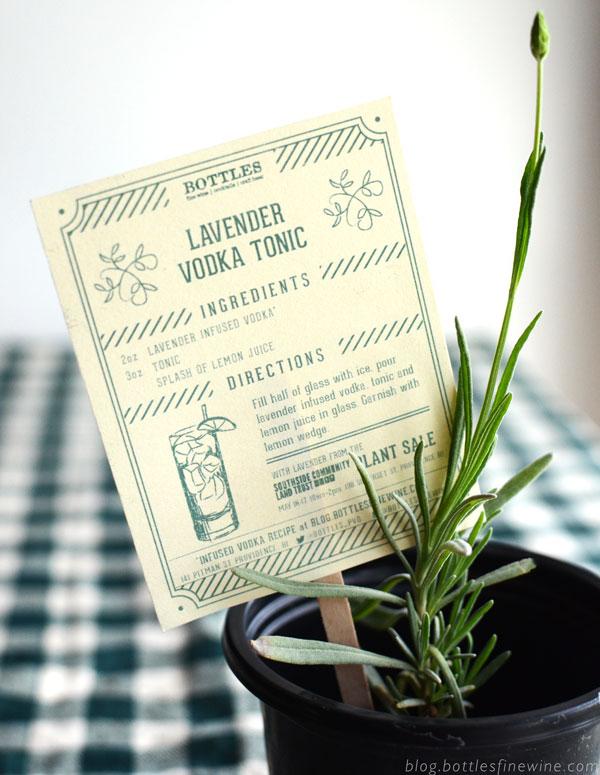 sclt-lavenderrecipecard