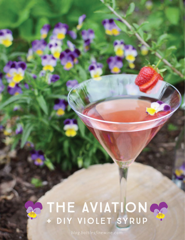 aviationviolet-blogtitle