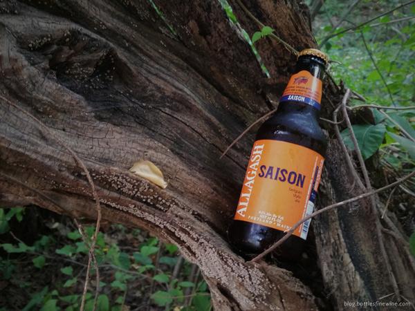 Allagash Saison Beer