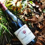 The Top Red Wines for Your Thanksgiving Table