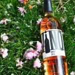 Bottles' Classics: Our Go-To Rosés