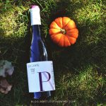 Top Wines For Fall – Part I